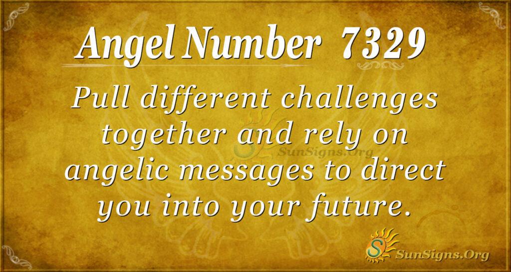 7329 angel number