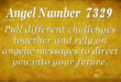 7329 angel number