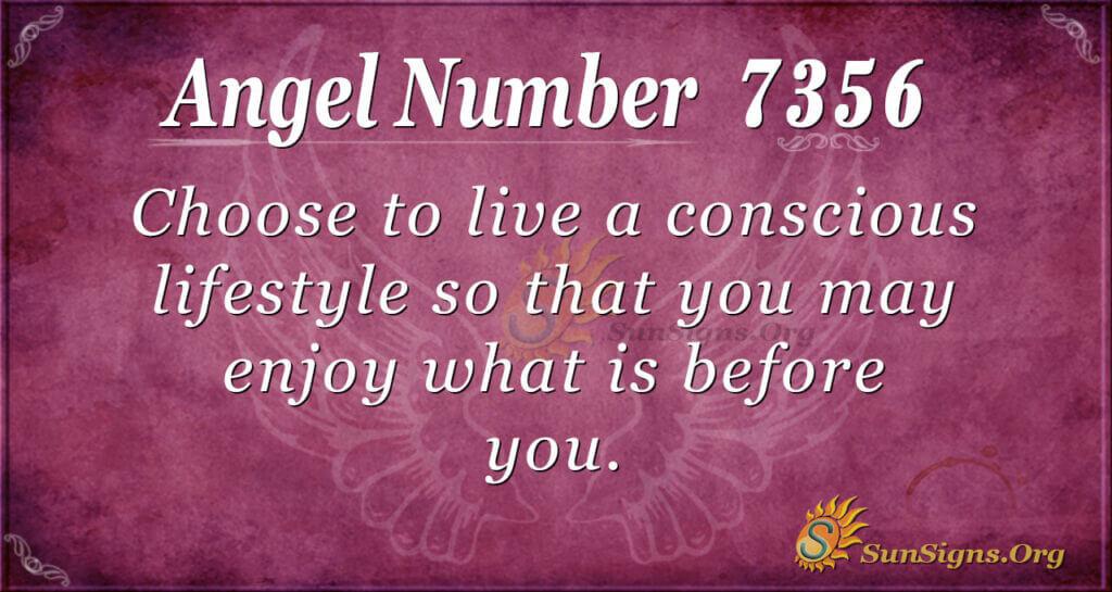 7356 angel number