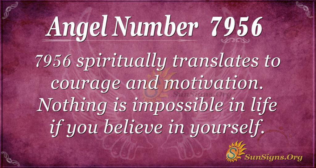 7956 angel number