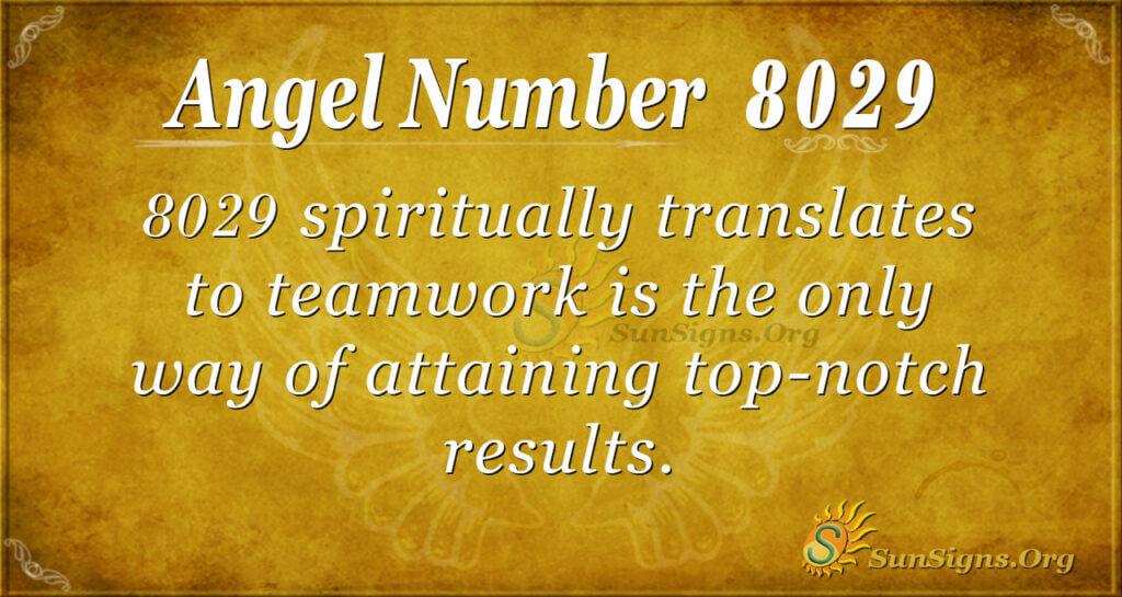 8029 angel number