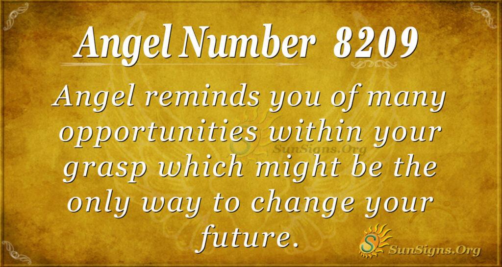 8209 angel number
