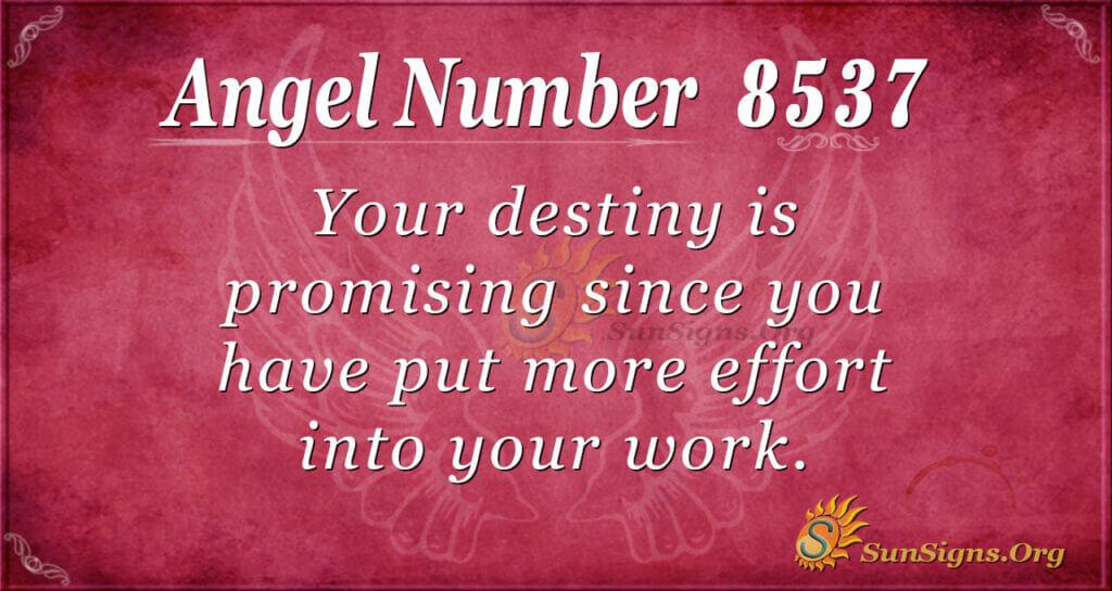 8537 angel number