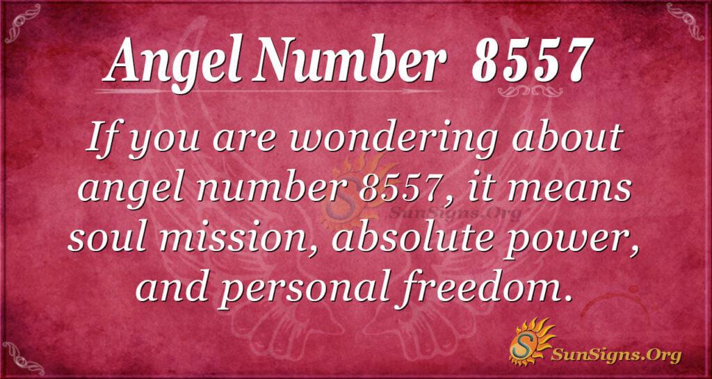 8557 angel number
