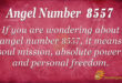 8557 angel number