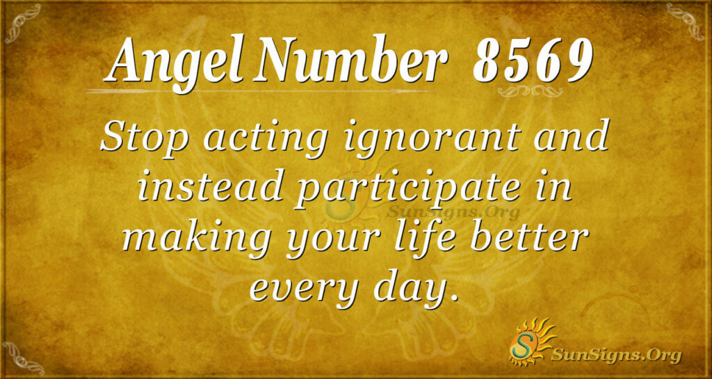 8569 angel number