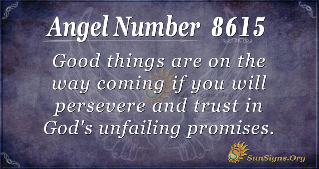 8615 angel number