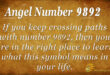 9892 angel number