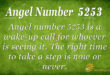 5253 angel number