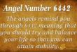 6442 angel number