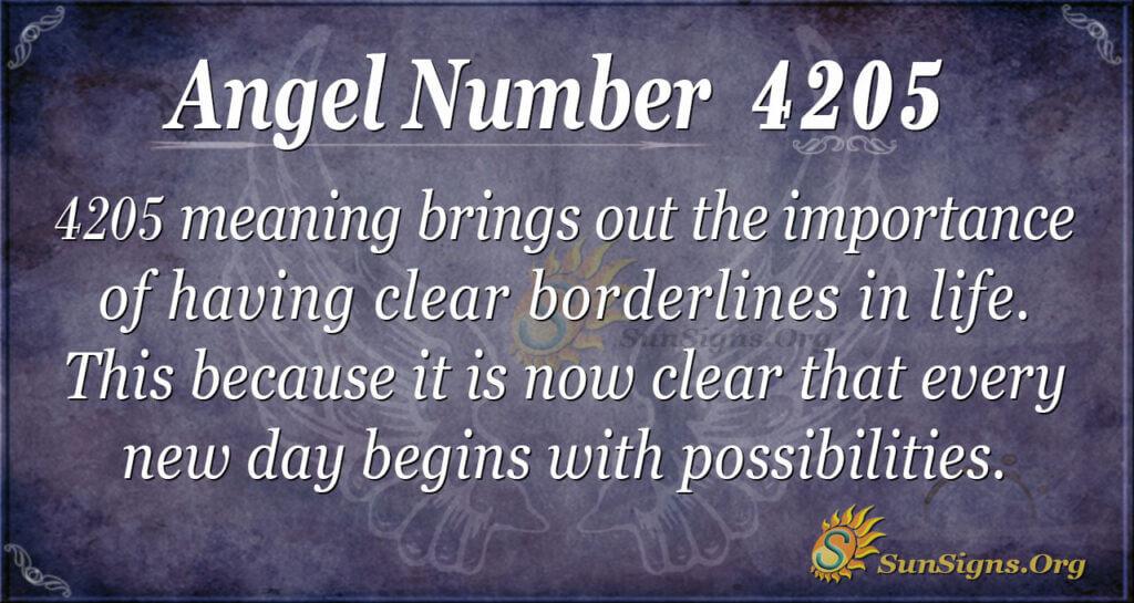 4205 angel number