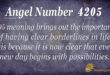 4205 angel number