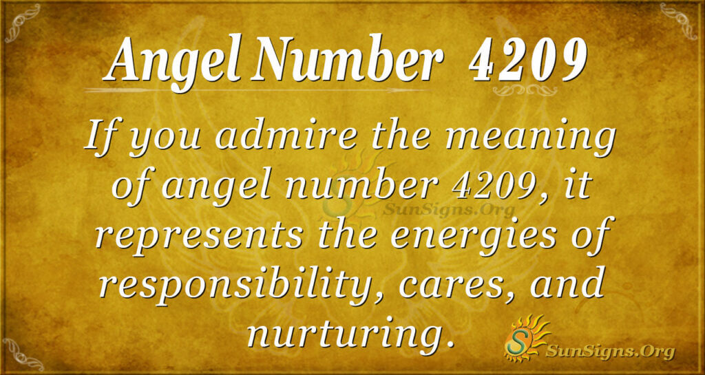 4209 angel number