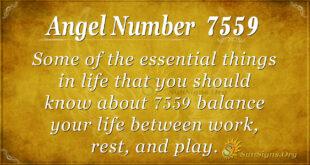 7559 angel number