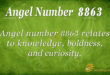8863 angel number