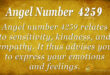 4259 angel number
