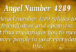 4289 angel number