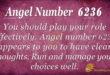 6236 angel number