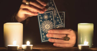 questions to ask a tarot reader