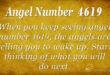 4619 angel number