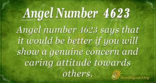 4623 angel number