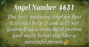 4631 angel number