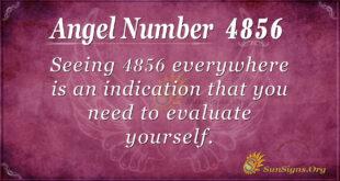 4856 angel number