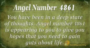 4861 angel number