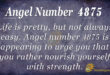 4875 angel number