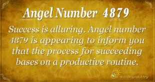 4879 angel number