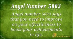 5003 angel number
