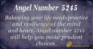 5245 angel number
