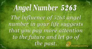 5263 angel number