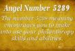5289 angel number