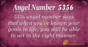 5356 angel number