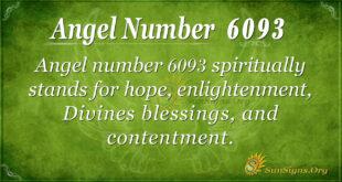 6093 angel number