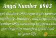 6903 angel number