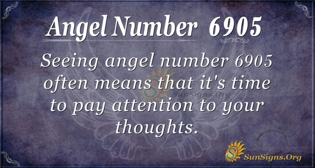6905 angel number