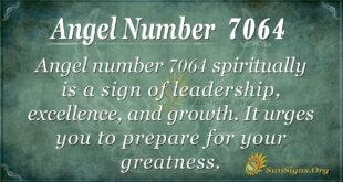 7064 angel number
