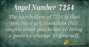 7254 angel number