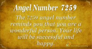 7259 angel number