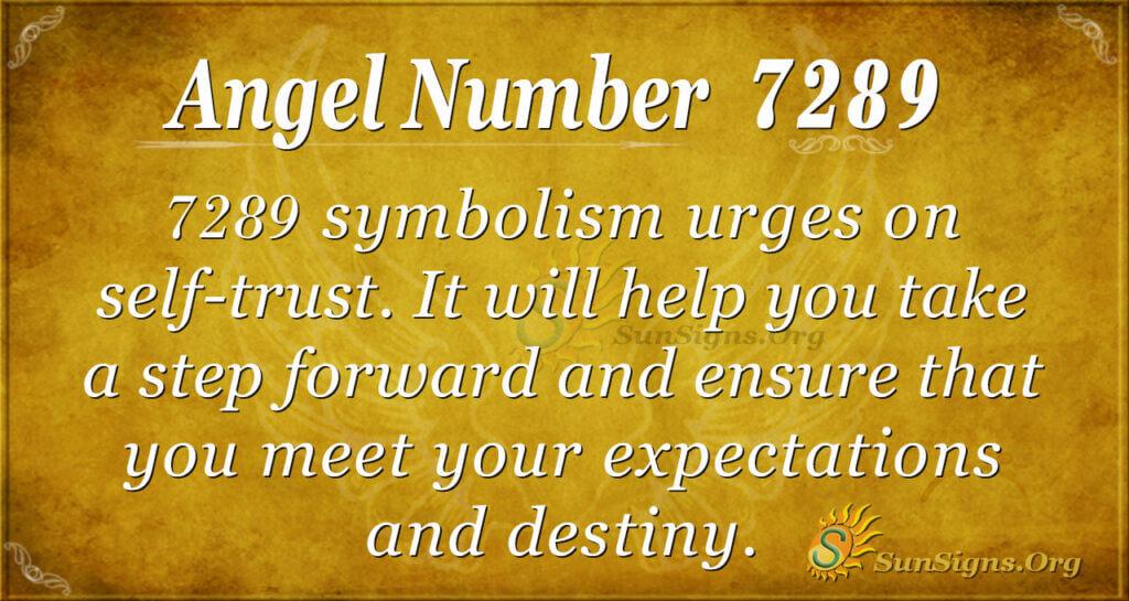 7289 angel number