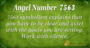 7563 angel number