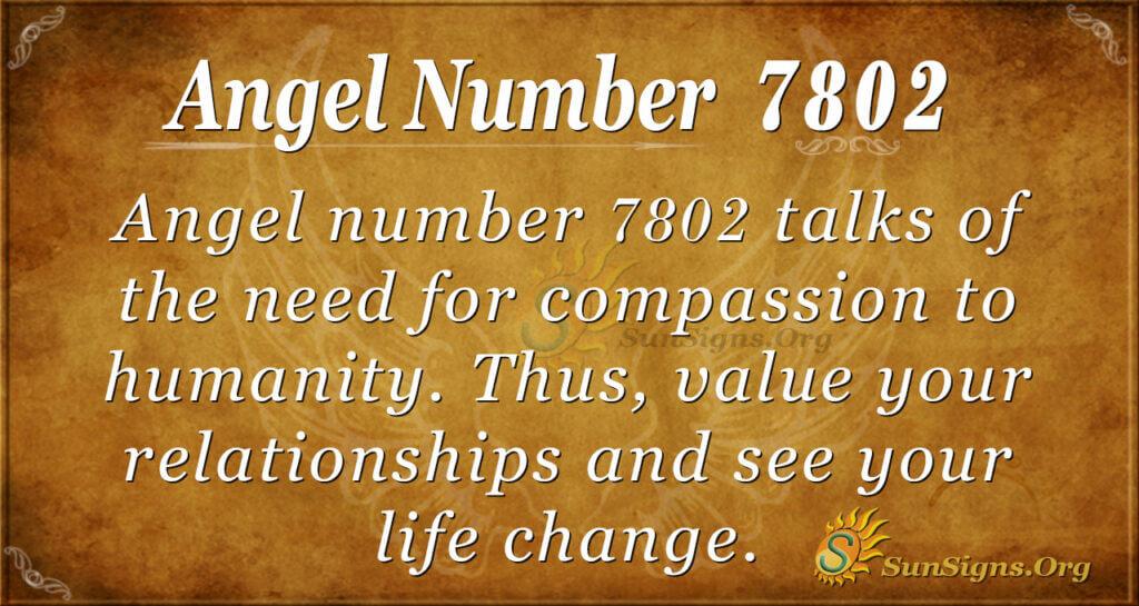 7802 angel number