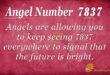 7837 angel number