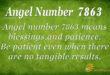 7863 angel number