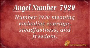 7920 angel number