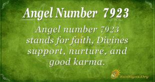 7923 angel number