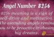 8256 angel number