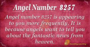 8257 angel number